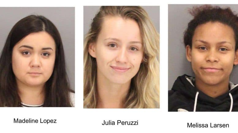 3 women accused of robbing employees at local open houses, retail stores