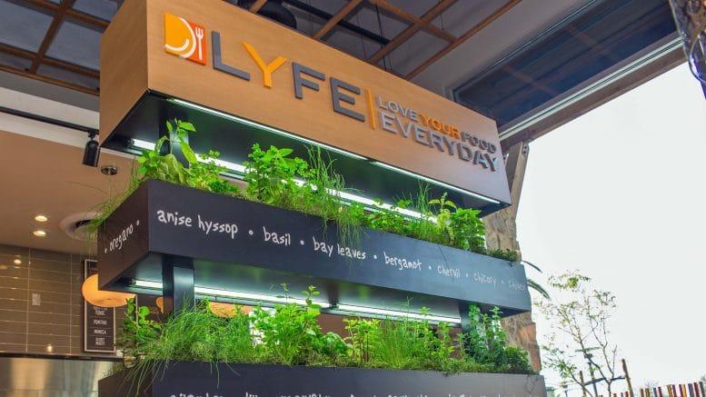 Lyfe Kitchen Closes Cupertino Location Cupertino Today