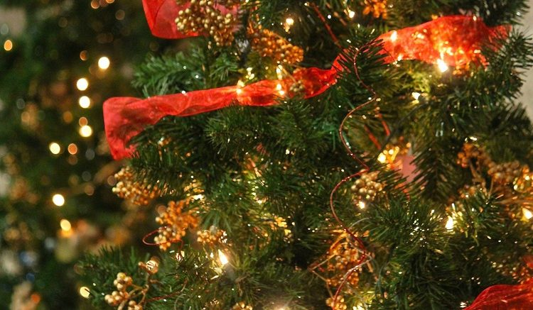 Cupertino Tree Lighting to prepare for the holidays