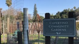 Community asked to help redesign McClellan Ranch gardens
