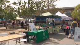 The Cupertino Volunteer Fair will take place on May 5 from 11 a.m. to 3 p.m.