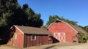 Volunteers sought to spruce up McClellan Ranch