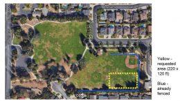 Feedback sought: Should Jollyman Park allow off-leash dog exercise?