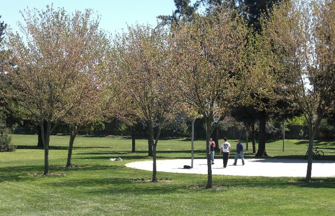 Photo of the Jollyman Park basketball court courtesy of the City of Cupertino.